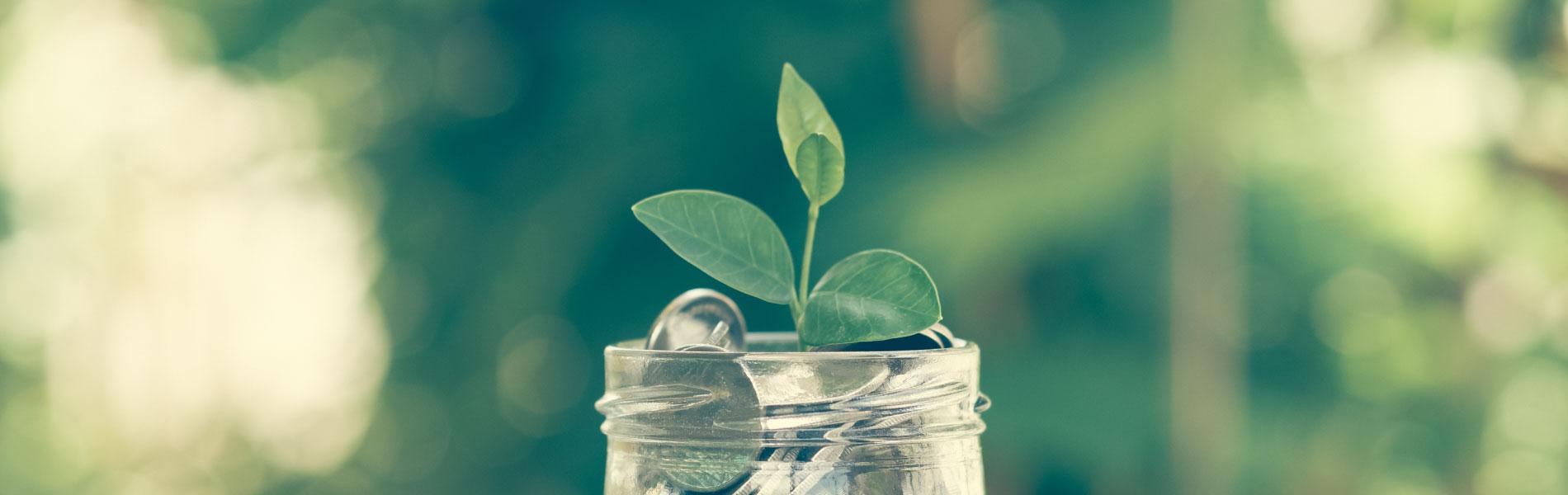 Développez vos richesses, les clés de la relation saine à l'argent
